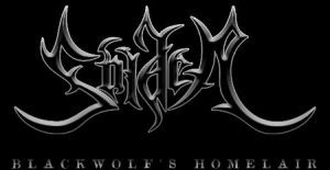 soiden logo