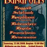burgfolk2009