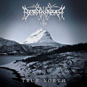 Borknagar true north