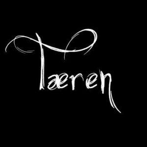 Teren logo